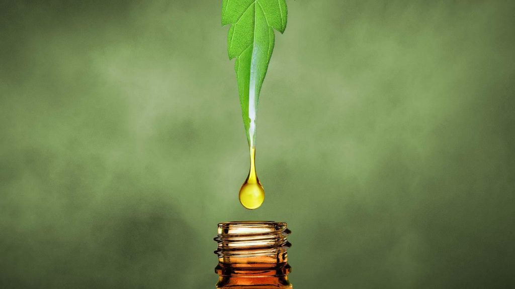 extract CBD oil